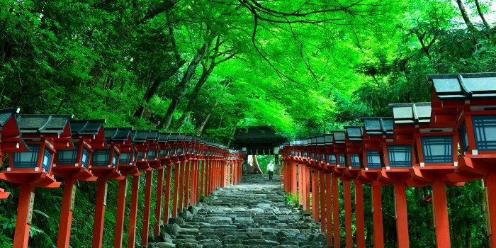 京都で当たる占い館の選び方。オススメ8選